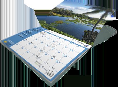 dr-hiranaka-calendar